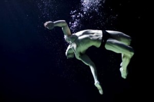 Adrian Turner - Amphibians
